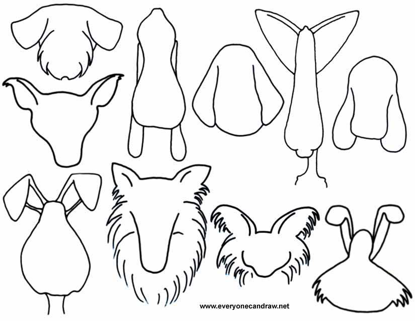 Cartoon Animal HeadsThree Headed Animal Drawing